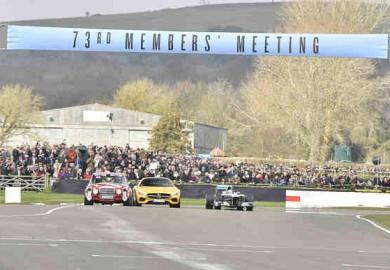 mercedes f1 car in Goodwood (1)